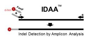 INDEL Detection by Amplicon Analysis (IDAA™)